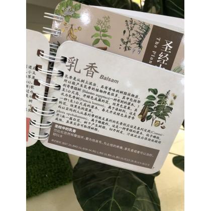 圣经中的植物